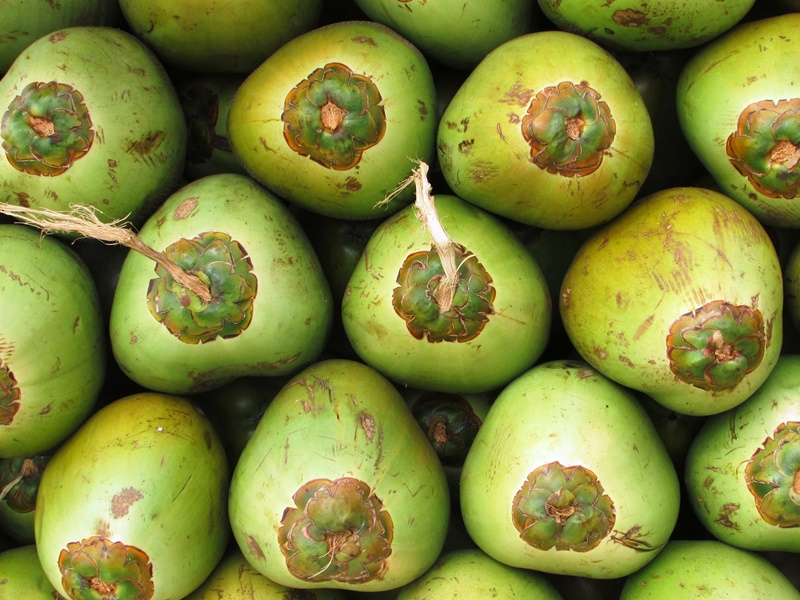 12. Young Coconuts